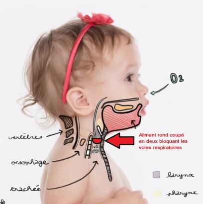 respiration-mastication-bebe demi-rond