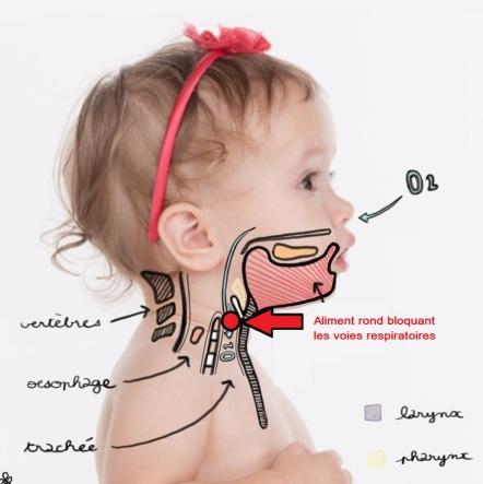 respiration-mastication-bebe