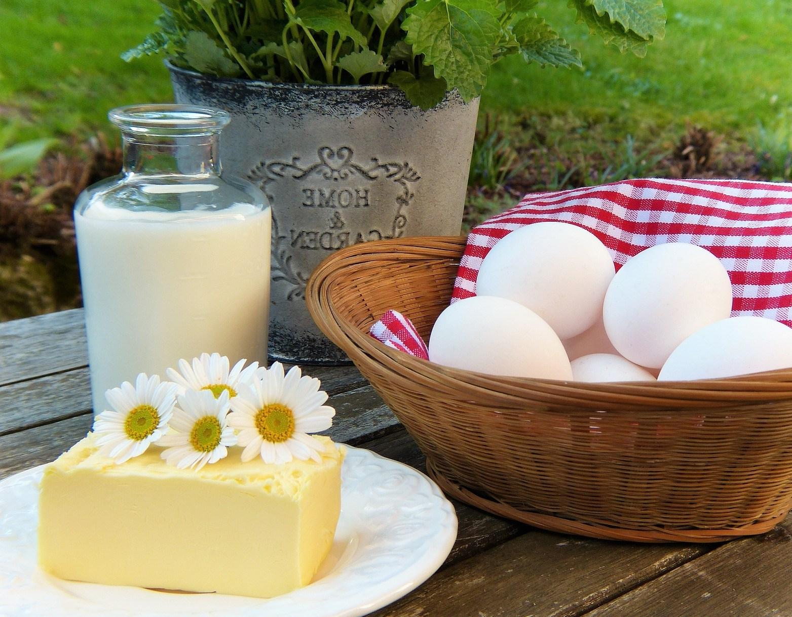 egg-2191991_1920.jpg